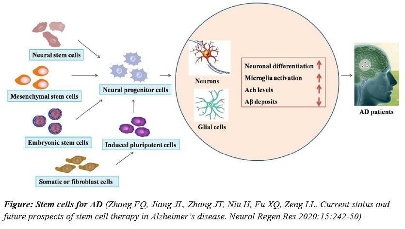 MSCs for Alzheimer's disease