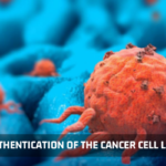 Authentication of Cancer Cell Line - Kosheeka