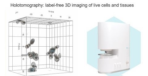 Holotomography: Imaging Stem cells in 3D