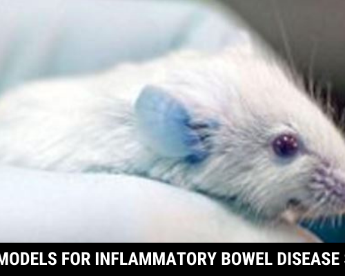 Mouse Models For Inflammatory Bowel Disease Studies