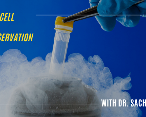 Primary Cell Culture Cryopreservation: Q&A with Dr. Sachin Kadam