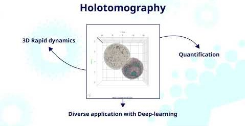 Holotomography benefits