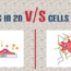 2D vs 3D Cell Cultures - Kosheeka